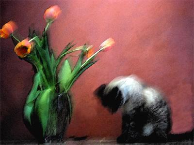 Flowers for Ba