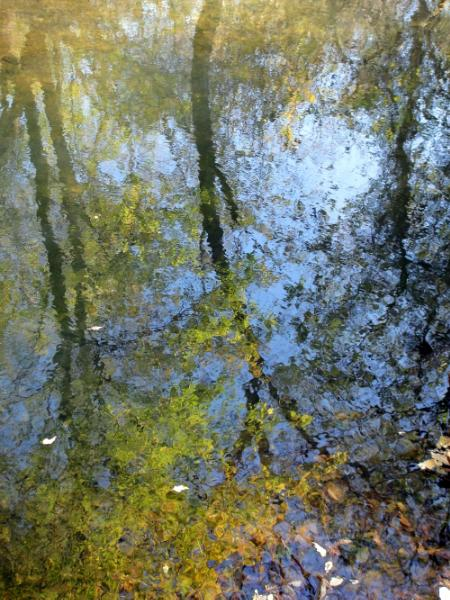 Tributary 1