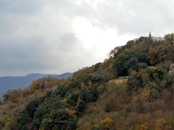 Vecino Spoleto